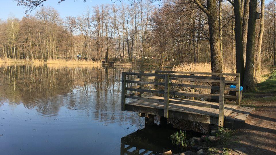 Borecké rybníky na Karlovarsku